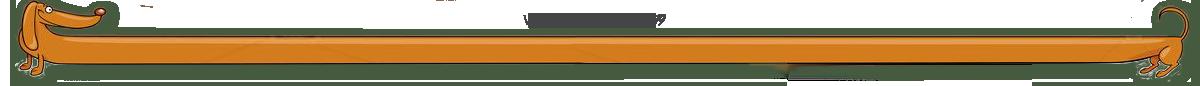 Гостиница для животных, дрессировка собак в Воронеже, зоогостиница, передержка собак, гостиница для собак. Питомник Малышевская Звезда.